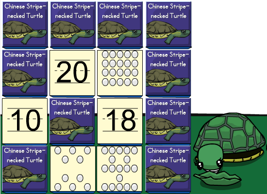 turtle matching numbers by grouping